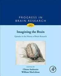 Imagining the Brain