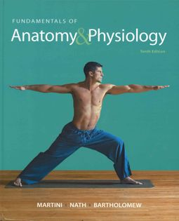 HPB | Search for Fundamentals of Anatomy & Physiology