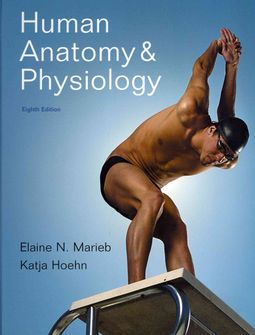 Human Anatomy & Physiology / A Brief Atlas of the Human Body / Interactive Physiology 10-System Suite
