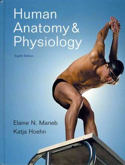 Human Anatomy & Physiology / A Brief Atlas of the Human Body
