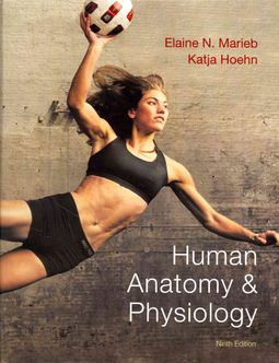 Human Anatomy & Physiology + A Brief Atlas of the Human Body + Interactive Physiology