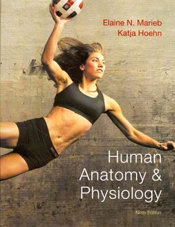 Human Anatomy & Physiology + A Brief Atlas of the Human Body+ Interactive Physiology