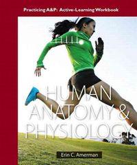 Human Anatomy & Physiology by Amerman, Erin C