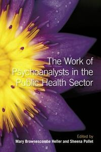 The Work of Psychoanalysts in the Public Health Sector