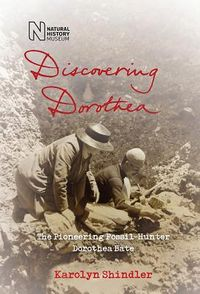 Discovering Dorothea