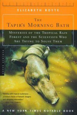 The Tapir's Morning Bath