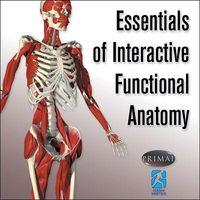 Essentials of Interactive Functional Anatomy