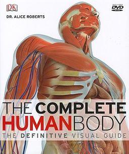 anatomy bodybuilding a complete visual guide