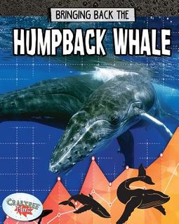 Bringing Back the Humpback Whale