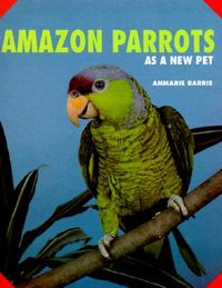 Amazon Parrots As a New Pet