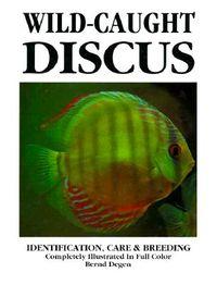 Wild-Caught Discus