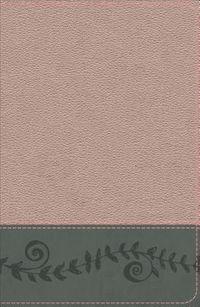 KJV Study Bible for Girls