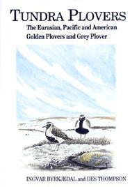 Tundra Plovers
