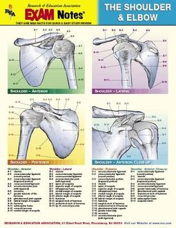 The Shoulder & Elbow Exam Notes