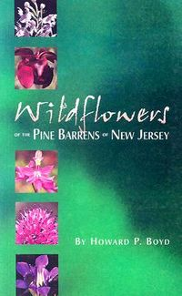 Wildflowers of the Pine Barrens of New Jersey