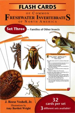 Flash Cards of Common Freshwater Invertebrates of North America