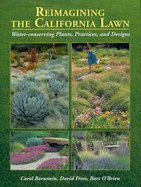 Reimagining the California Lawn