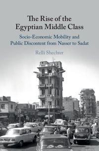 The Rise of the Egyptian Middle Class