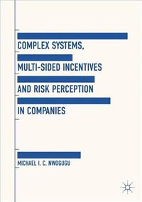 Complex Systems, Multi-sided Incentives and Risk Perception in Companies