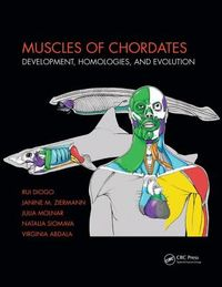 Muscles of Chordates