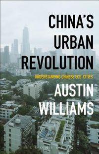 China?s Urban Revolution