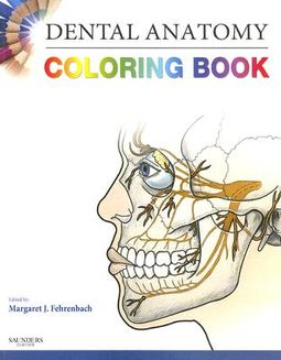 Dental Anatomy Coloring Book by Fehrenbach, Margaret J., RDH, MS (EDT)