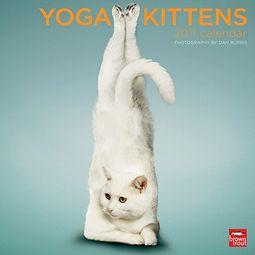 Yoga Kittens 2011 Calendar