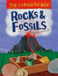 The Curiosity Box - Rocks and Fossils