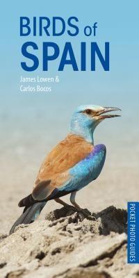 Birds of Spain