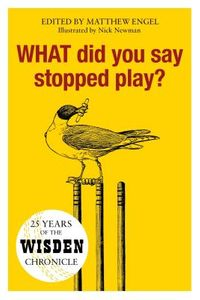 What Did You Say Stopped Play?