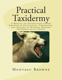 Practical Taxidermy