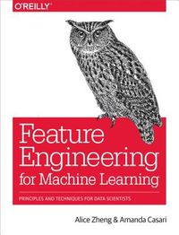Feature Engineering for Machine Learning