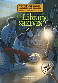 The Library Shelves