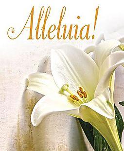 Alleluia! Easter Lilies Bulletin