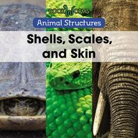 Shells, Scales, and Skin