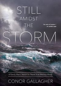 Still Amidst the Storm