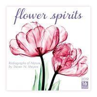 Flower Spirits Radiographs of Nature by Steven N. Meyers 2019 Calendar