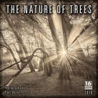 The Nature of Trees 2019 Calendar
