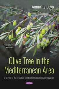 Olive Tree in the Mediterranean Area
