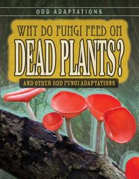 Why Do Fungi Feed on Dead Plants?