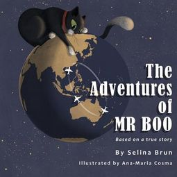 The Adventures of Mr Boo
