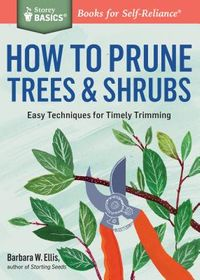 How to Prune Trees & Shrubs