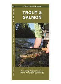 Trout & Salmon of North America