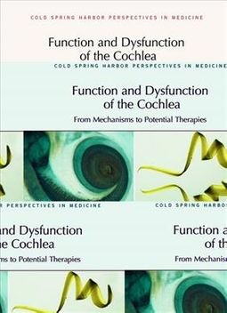 Function Dysfunction of Cochlea