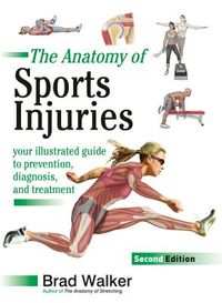 The Anatomy of Sports Injuries