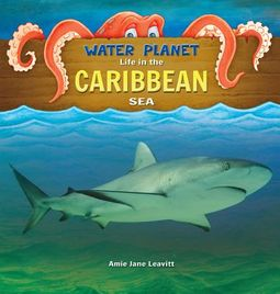 Life in the Caribbean Sea
