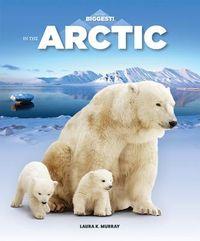 In the Arctic