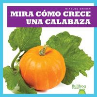 Mira c?mo crece una calabaza / Watch a Pumpkin Grow