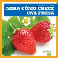 Mira c?mo crece una fresa / Watch a Strawberry Grow