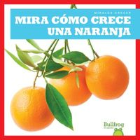 Mira c?mo crece una naranja / Watch an Orange Grow